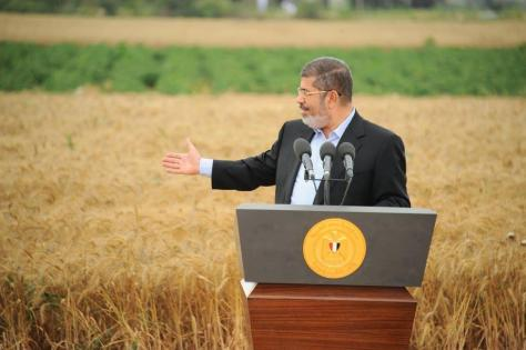 Morsi:Wheat